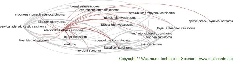 Diseases related to Adenoid Basal Cell Carcinoma