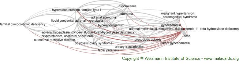 Diseases related to Adrenal Hyperplasia, Congenital, Due to Steroid 11-Beta-Hydroxylase Deficiency