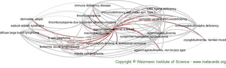 Diseases related to Agammaglobulinemia, X-Linked
