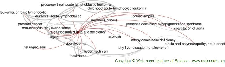 Diseases related to Aica-Ribosuria Due to Atic Deficiency