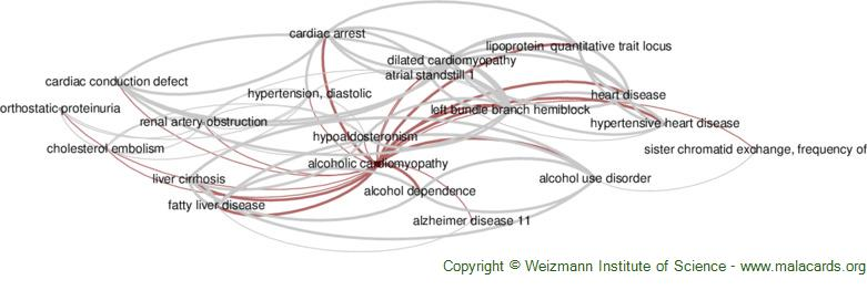 Diseases related to Alcoholic Cardiomyopathy