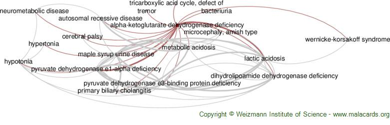 Diseases related to Alpha-Ketoglutarate Dehydrogenase Deficiency