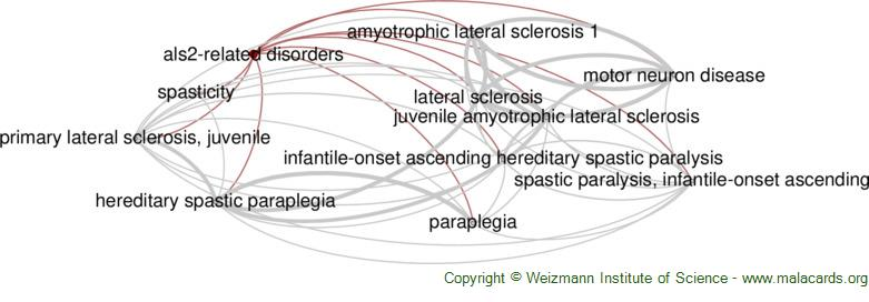 Diseases related to Als2-Related Disorders