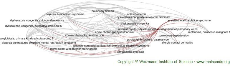 Diseases related to Alveolar Capillary Dysplasia with Misalignment of Pulmonary Veins