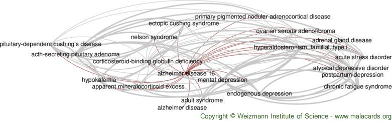Diseases related to Alzheimer Disease 16