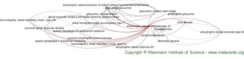Diseases related to Amyotrophic Lateral Sclerosis Type 12