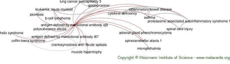 Diseases related to Antigen Defined by Monoclonal Antibody Aj9