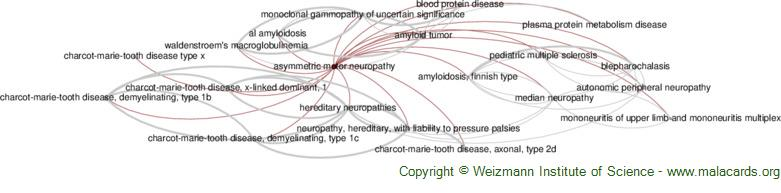 Diseases related to Asymmetric Motor Neuropathy