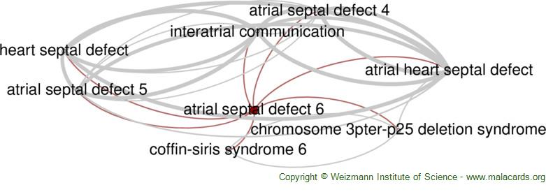 Diseases related to Atrial Septal Defect 6