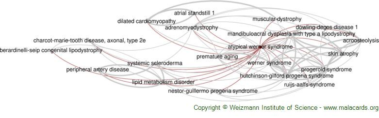 Diseases related to Atypical Werner Syndrome