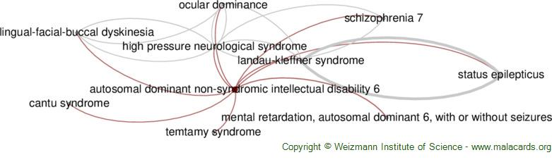 Diseases related to Autosomal Dominant Non-Syndromic Intellectual Disability 6