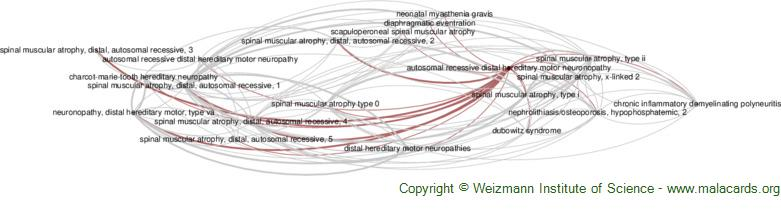 Diseases related to Autosomal Recessive Distal Hereditary Motor Neuronopathy