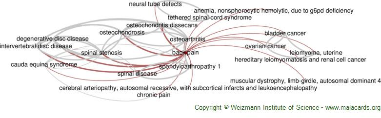 Diseases related to Back Pain