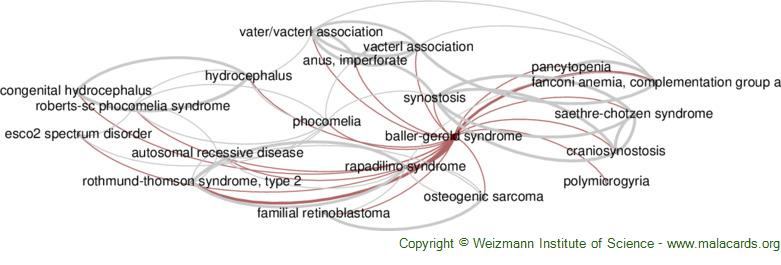 Diseases related to Baller-Gerold Syndrome