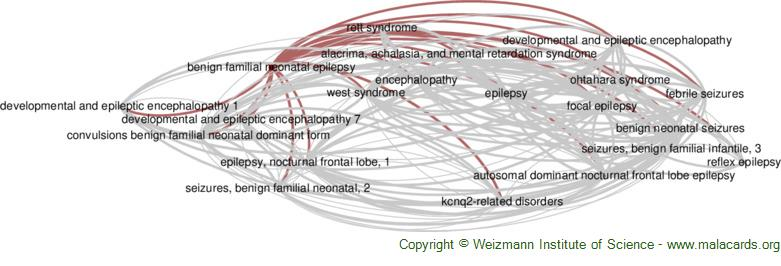 Diseases related to Benign Familial Neonatal Epilepsy