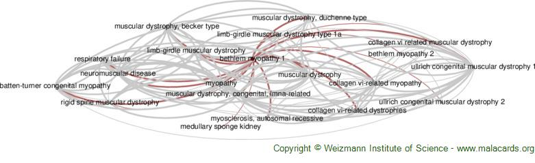 Diseases related to Bethlem Myopathy 1