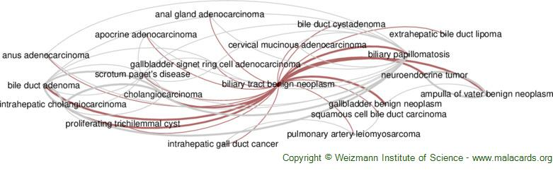Diseases related to Biliary Tract Benign Neoplasm