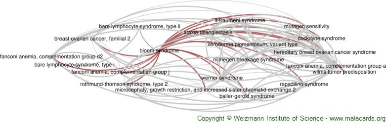 Diseases related to Bloom Syndrome