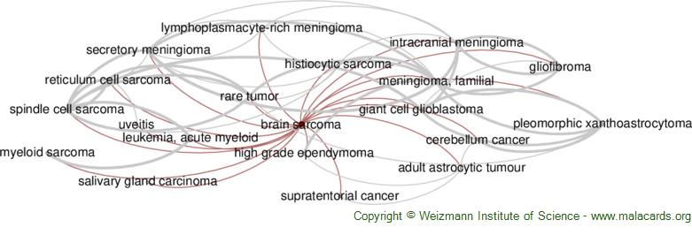 Diseases related to Brain Sarcoma