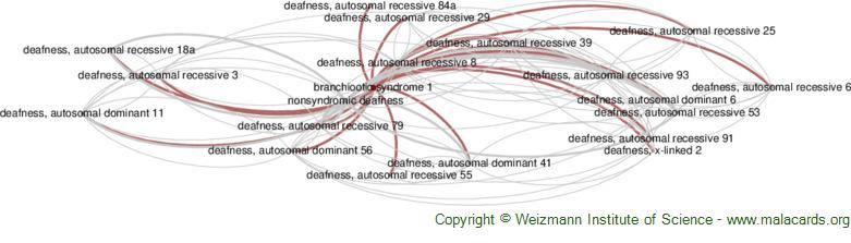 Diseases related to Branchiootic Syndrome 1