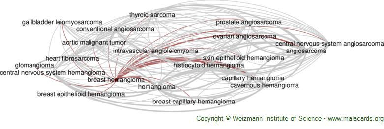 Diseases related to Breast Hemangioma