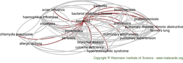Diseases related to Bronchitis