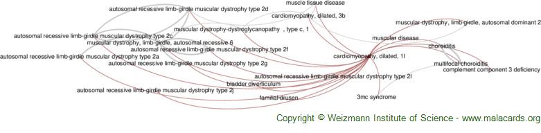Diseases related to Cardiomyopathy, Dilated, 1l
