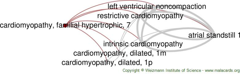 Diseases related to Cardiomyopathy, Familial Hypertrophic, 7