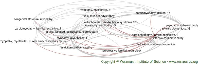 Diseases related to Cardiomyopathy, Familial Restrictive, 3