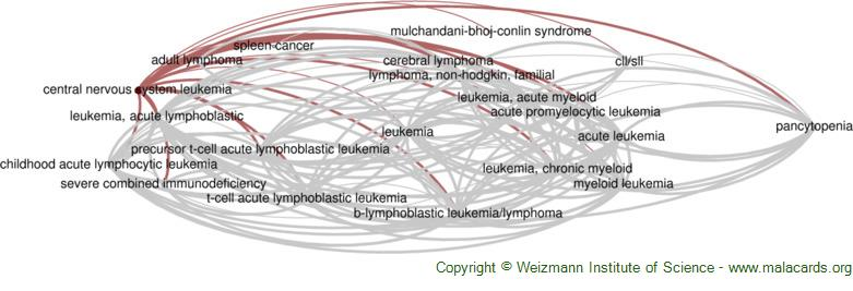 Diseases related to Central Nervous System Leukemia
