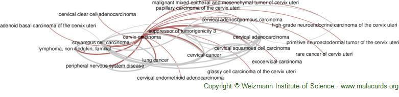Diseases related to Cervix Carcinoma