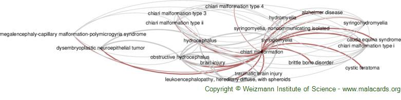 Diseases related to Chiari Malformation