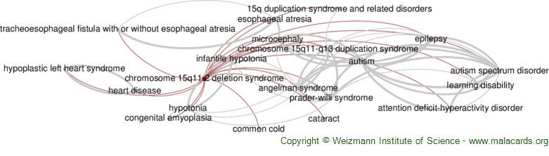 Diseases related to Chromosome 15q11.2 Deletion Syndrome