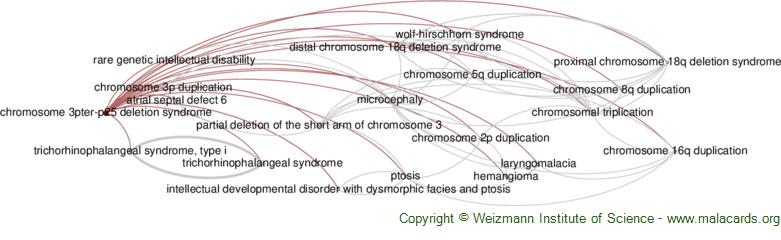 Diseases related to Chromosome 3pter-P25 Deletion Syndrome
