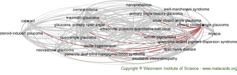 Diseases related to Chronic Closed-Angle Glaucoma