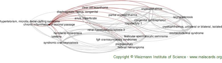 Diseases related to Chronic Inflammation of Lacrimal Passage