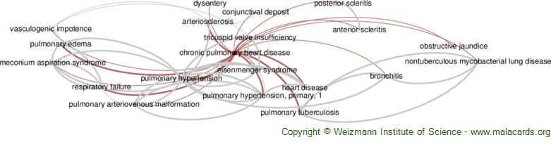 Diseases related to Chronic Pulmonary Heart Disease