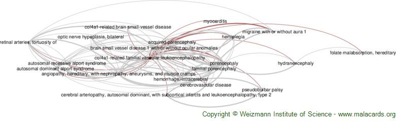 Diseases related to Col4a1-Related Familial Vascular Leukoencephalopathy
