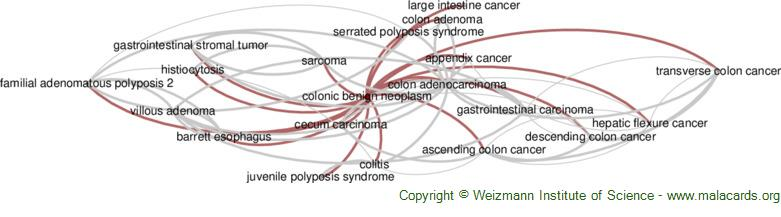 Diseases related to Colonic Benign Neoplasm