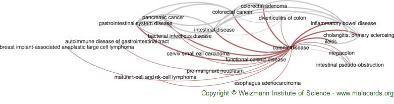 Diseases related to Colonic Disease