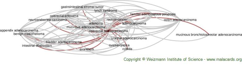 Diseases related to Colorectal Adenocarcinoma