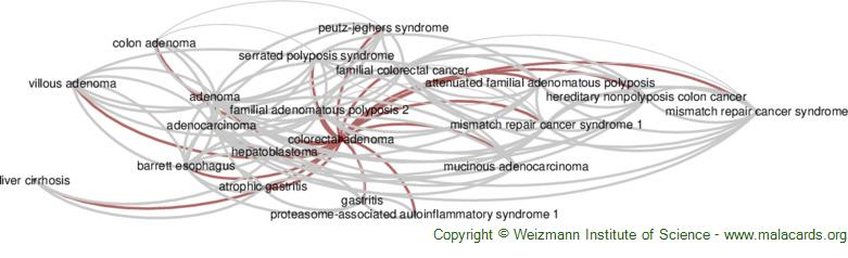 Diseases related to Colorectal Adenoma
