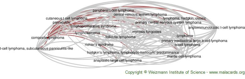 Diseases related to Composite Lymphoma
