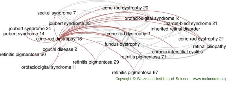 Diseases related to Cone-Rod Dystrophy 16