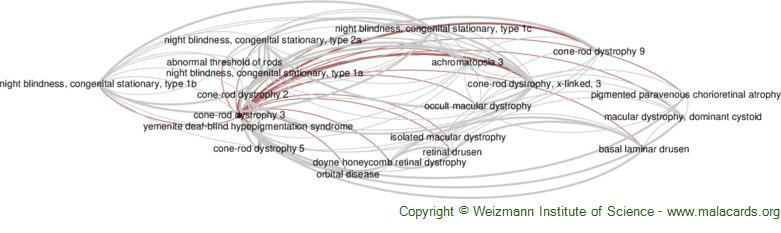 Diseases related to Cone-Rod Dystrophy 3