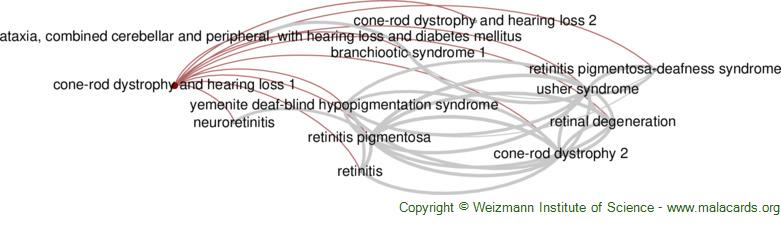 Diseases related to Cone-Rod Dystrophy and Hearing Loss 1