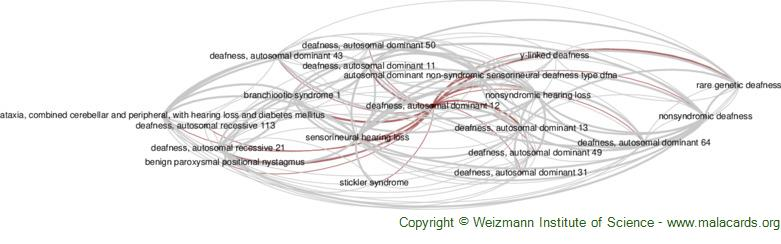 Diseases related to Deafness, Autosomal Dominant 12