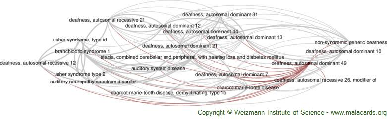 Diseases related to Deafness, Autosomal Dominant 49