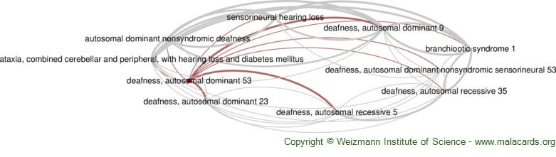 Diseases related to Deafness, Autosomal Dominant 53