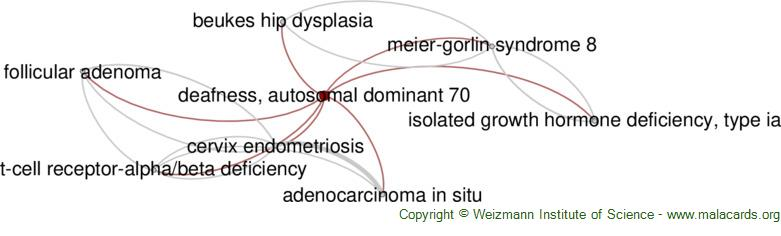 Diseases related to Deafness, Autosomal Dominant 70